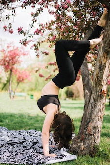 Young sporty woman doing handstand on tree in park