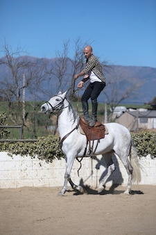 Young stunt guy in casual outfit riding white horse on sandy ground