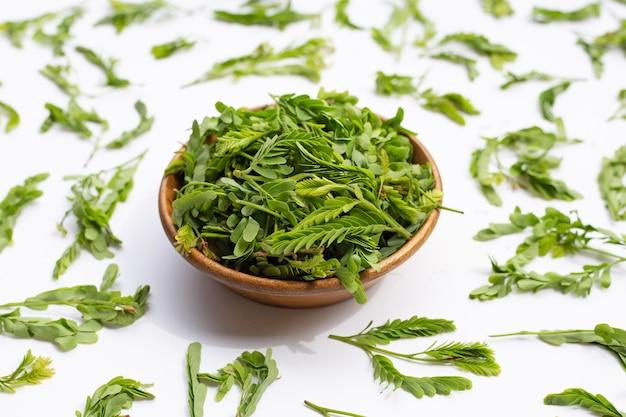 Молодые листья тамаринда для приготовления на белой поверхности