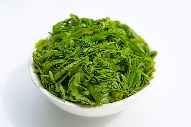 Молодые листья тамаринда в белой миске для приготовления пищи на белой поверхности