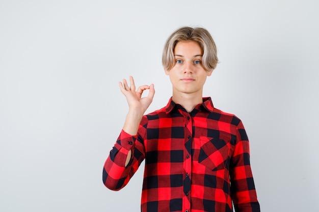 체크 셔츠에 확인 표시를 하 고 자신감을 찾고 젊은 십 대 소년. 전면보기.