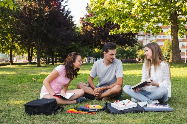 Young teenagers studying on lawn