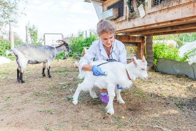 목장 현장에서 염소 아이를 잡고 검사하는 청진기를 가진 젊은 수의사