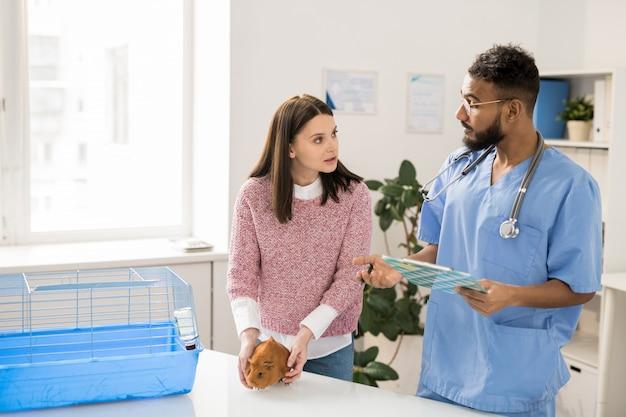 애완 동물을위한 처방을하면서 기니피그의 유니폼 컨설팅 소유자의 젊은 수의사