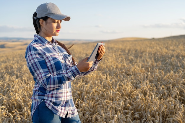 Молодая женщина-агроном проверяет рост пшеницы на поле, фермер делает заметки на планшетном агробизнесе ...