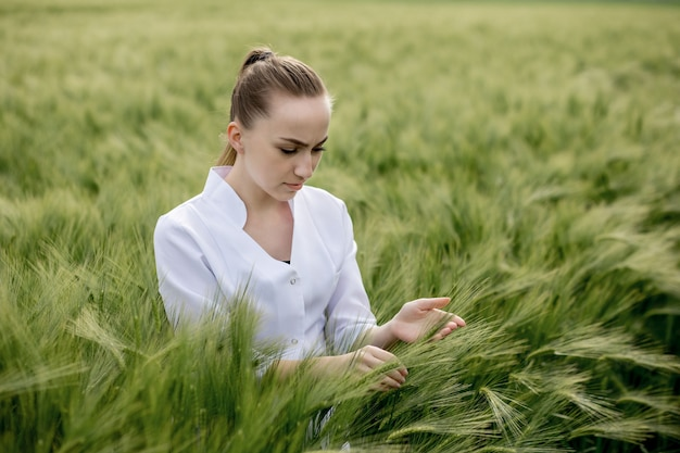 Young woman agronomist in white coat squatting in green wheat field and checking crop quality.