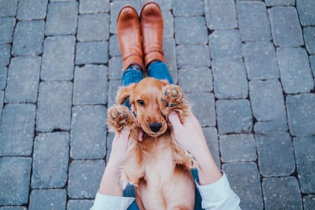 かわいいコッカー犬と遊んで通りで若い女性。ペットと一緒にアウトドアライフスタイル