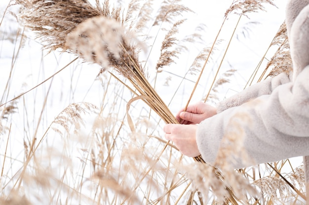 A young woman in a beige dress of neutral colors collects pampas grass