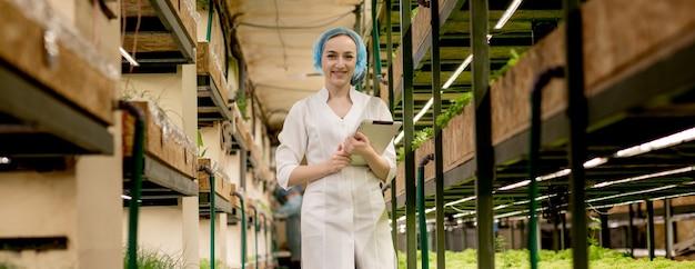 Молодая женщина-биотехнолог с помощью планшета для проверки качества и количества овощей на гидропонной ферме