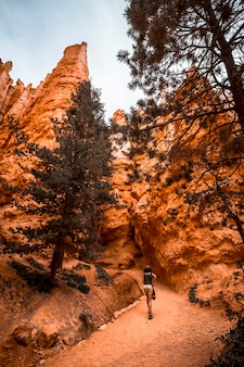 A young woman in a black t-shirt and shorts started the path from below the navajo loop trail in bryce national park, utah. united states