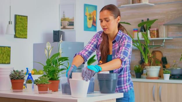 家の園芸のための作業台に植木鉢を持って来る若い女性。シャベル、白いセラミックポット、家の装飾のために植え替えるために準備された観葉植物を備えた肥沃な土壌を使用して、それらを世話します。