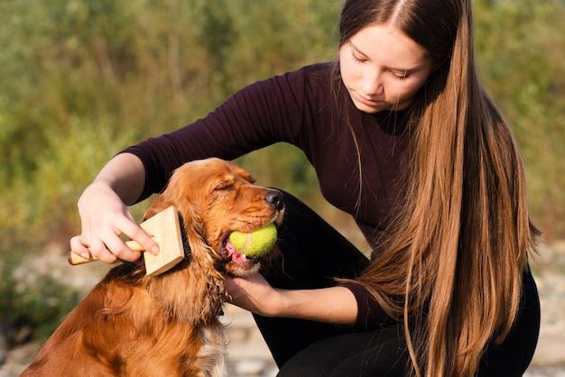 Молодая женщина чистит кокер спаниель