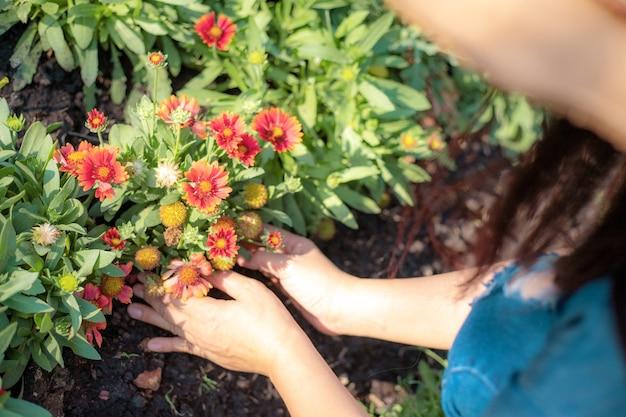 庭の花を気遣う若い女性。