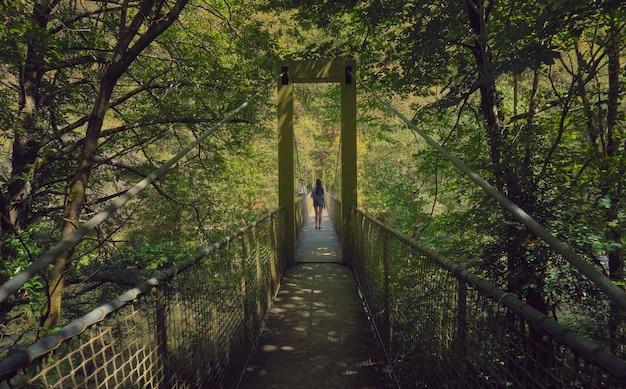 화창한 여름 날에 숲에서 현수교를 건너는 젊은 여자. 갈리시아의 숲. 산티아고의 길