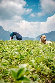 草の上に座っている犬と自然環境の中でヨガの練習をしている若い女性