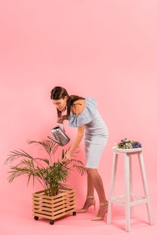 Young woman in dress watering green plant in pot