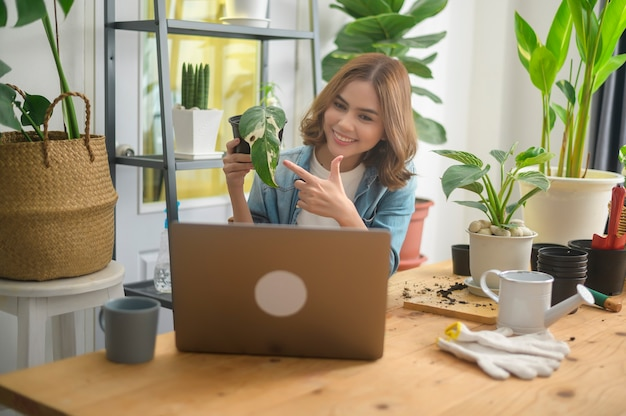 A young woman entrepreneur working with laptop presents houseplants during online live stream at home, selling online concept