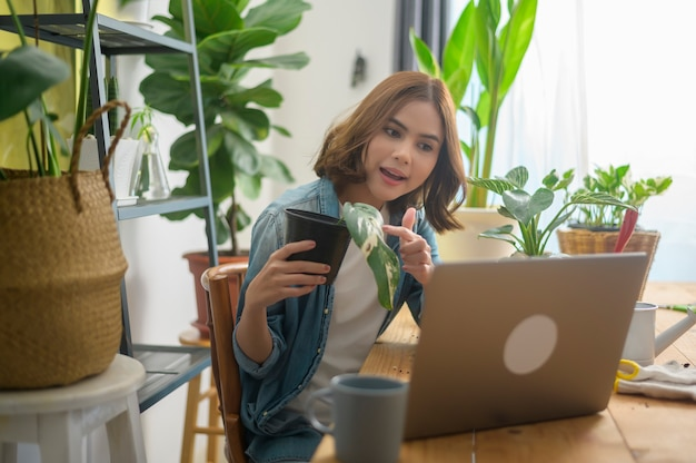 A young woman entrepreneur working with laptop presents houseplants during online live stream at home