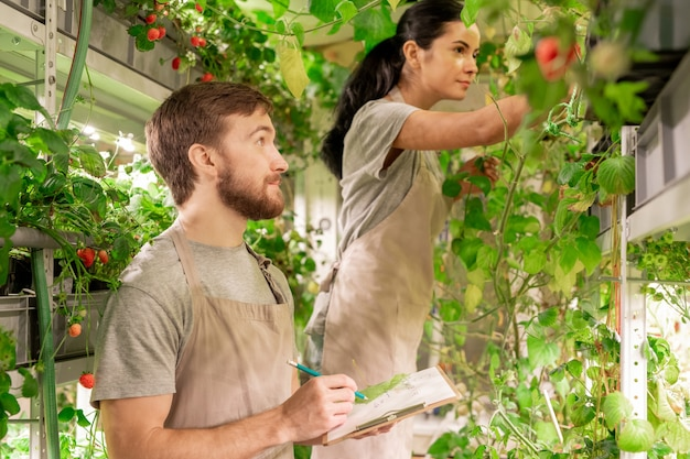 온실에서 식물 성장에 대한 정보를 기록하는 동안 식물을 검사하는 젊은 여자