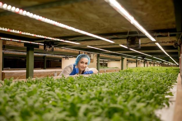 젊은 여성 농부 과학자가 유기농 수경 재배 채소밭에 대한 연구를 분석하고 연구합니다.