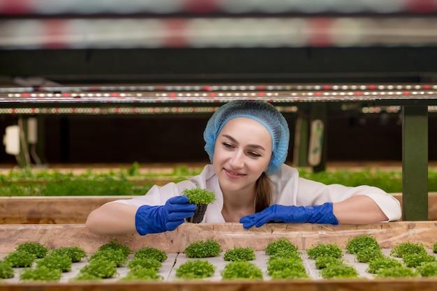 若い女性の農民の科学者は、有機物に関する研究を分析および研究しています