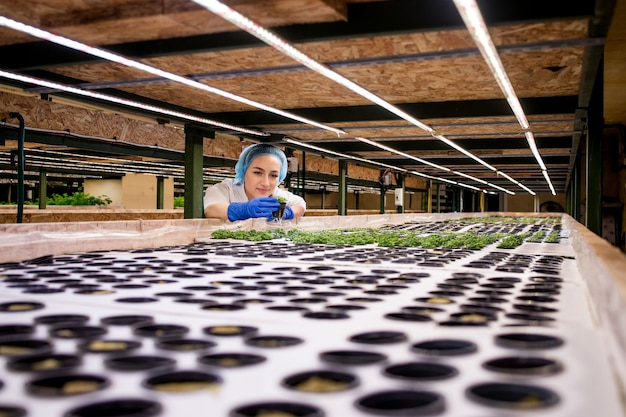 Young woman farmer scientist analyzes and studies research on organic, hydroponic vegetable plots