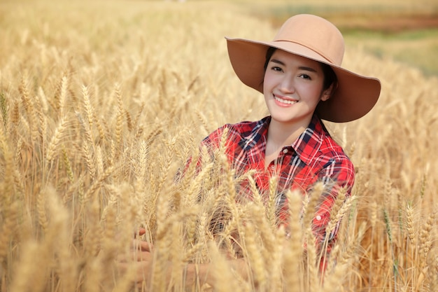 Young woman farmer waring scoth shirt color red with hat sitting in the golden barley farmland and very happy with productivity at chiangmai thailand.