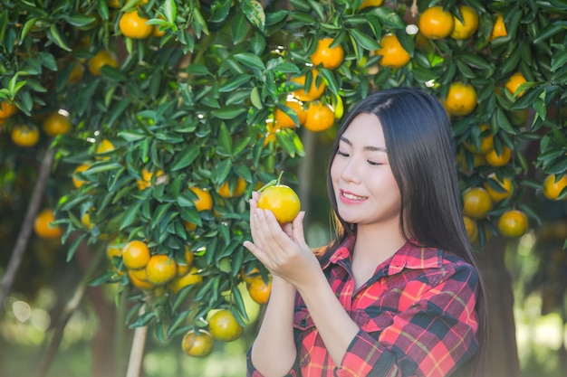 Young woman in the garden harvest orange in the garden.