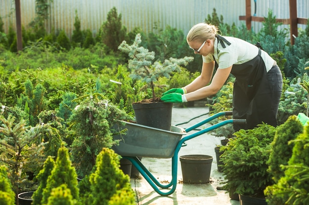 비옥한 토양에 식물을 이식하는 젊은 여성 정원사
