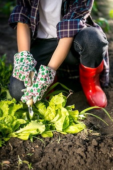 Young woman in gloves working in garden with metal spade