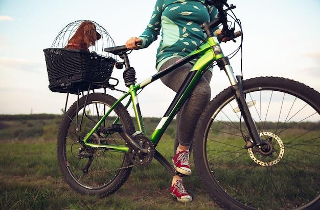 Молодая женщина весело возле загородного парка, езда на велосипеде, путешествуя с собакой-компаньоном-спаниелем. спокойная природа, весенний день, положительные эмоции. спортивный, активный отдых. вместе гуляем.