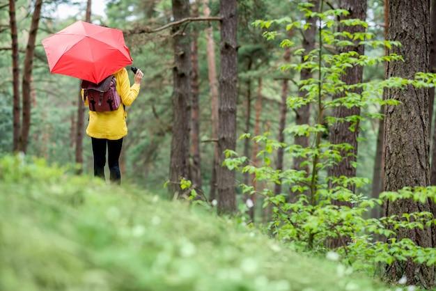 Молодая женщина в желтом плаще стоит с красным зонтиком в сосновом лесу
