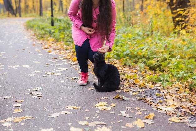 若い女性が秋の公園で黒猫をなでています