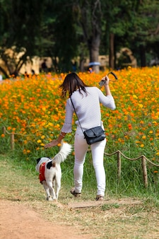 Behind of young woman is walking with a dog