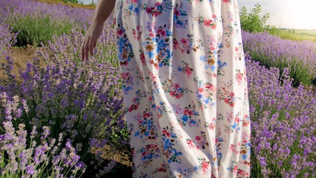 Young woman in long dress walking on lavender field at morning.