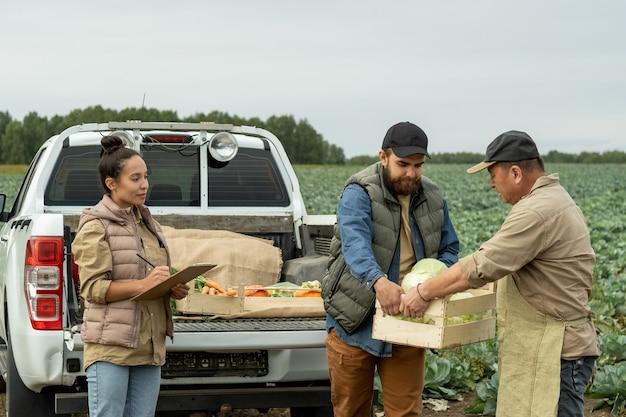 Молодая женщина делает заметки, пока один из двух мужчин передает коробку с капустой другому фермеру
