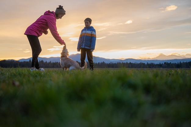 Послушание молодой женщины тренирует свою милую маленькую собаку вместе со своим сыном снаружи на красивом лугу на закате.