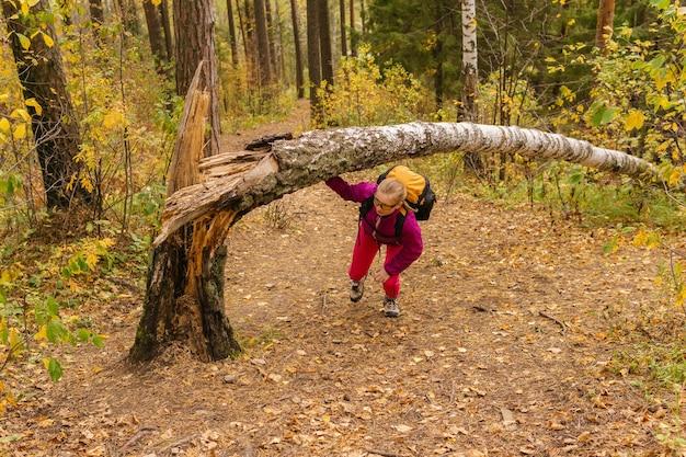 若い女性が秋の森でトレッキングを練習しながら障害を克服します