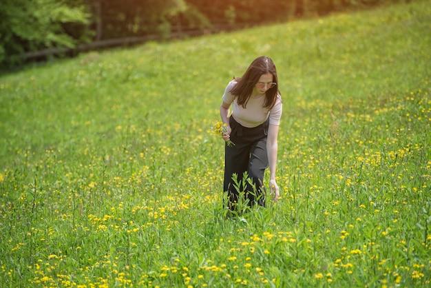 젊은 여자는 풀밭에서 꽃을 따기. 여름 화창한 날