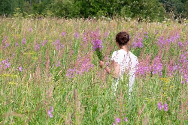 Молодая женщина собирает цветы иван-чая, chamerion angustifolium, кипрея в букете на поле, вид сзади. женщина собирает лечебные травы. альтернативная фитотерапия
