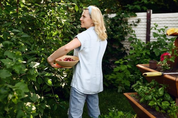 若い女性は庭でさくらんぼを選ぶ