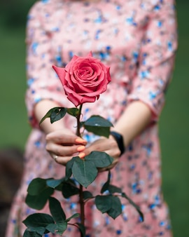 Young woman in a pink dress holding little pink rose in her hands. close-up