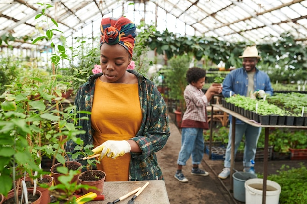 정원에서 일하는 배경에서 가족과 함께 묘목을 심는 젊은 여성