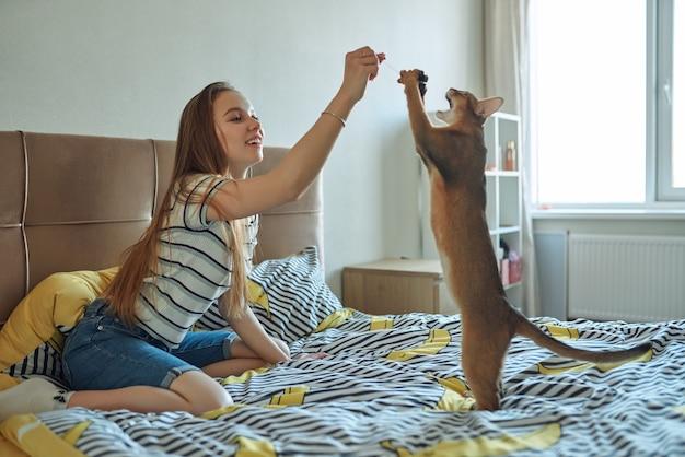 집에서 하루에 고양이와 놀고 젊은 여자. 애완 동물을 키우는 기쁨.