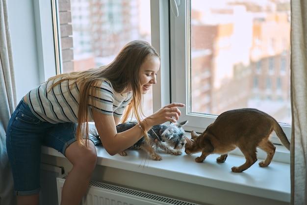 家で休日に犬と猫と遊ぶ若い女性。ペットを飼うことの喜び。