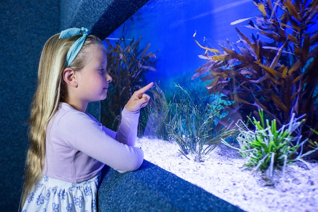 Young woman pointing fish in tank