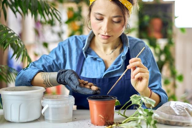 살아있는 식물 이식을 준비하는 동안 화분에 배수물을 붓는 젊은 여성