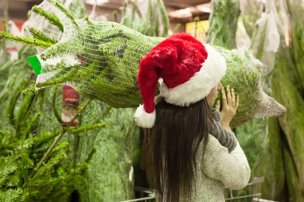 Young woman in santa hat carries christmas tree on the shoulders