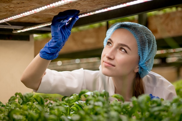 Young woman scientist analyzes and studies research on organic, hydroponic vegetable plots.