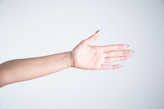 회색 배경에 빈 손바닥을 보여주는 젊은 여자
